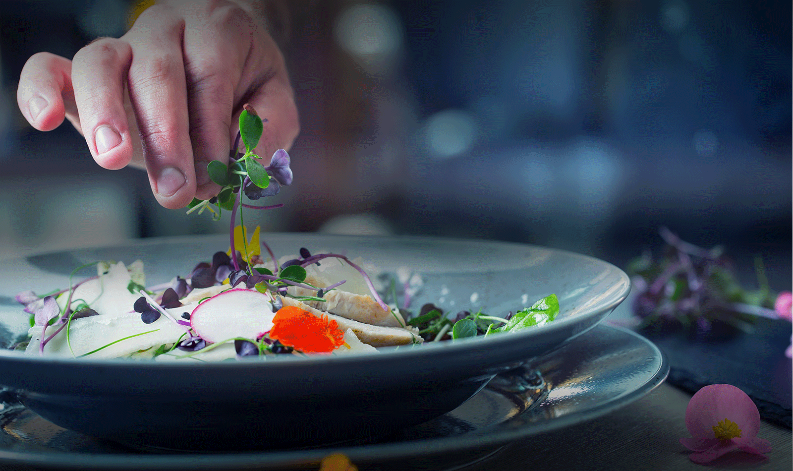 Chef hand garnishing a dish